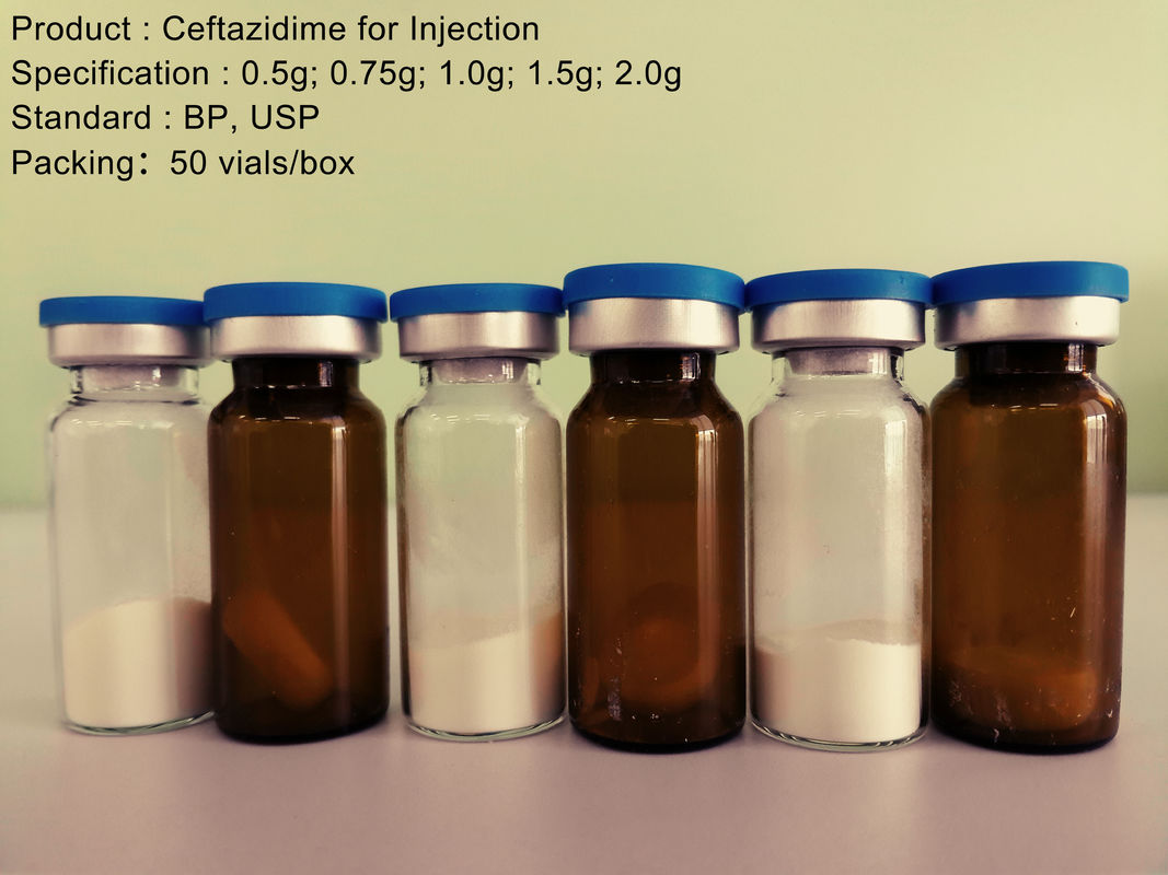 Ceftazidime Antibiotic Sodium / Ceftazidime For Injection 0.5G - 2.0G